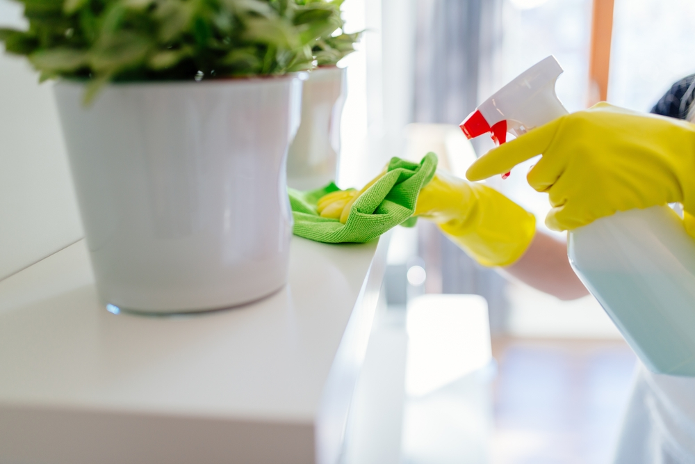 Bored at Home: Simple Spring Cleaning Checklist